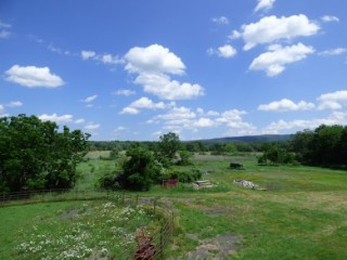 Court Ordered Auction! Black Horse Ranch