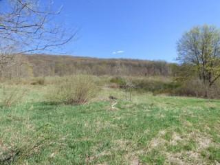Bankruptcy Auction! 2 Story Home & 42± Acre Farm Land