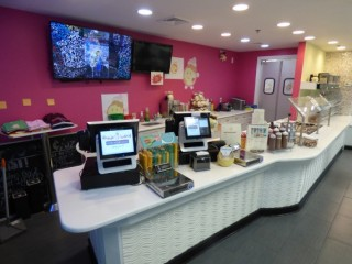 Complete FroYo World Frozen Yogurt Store